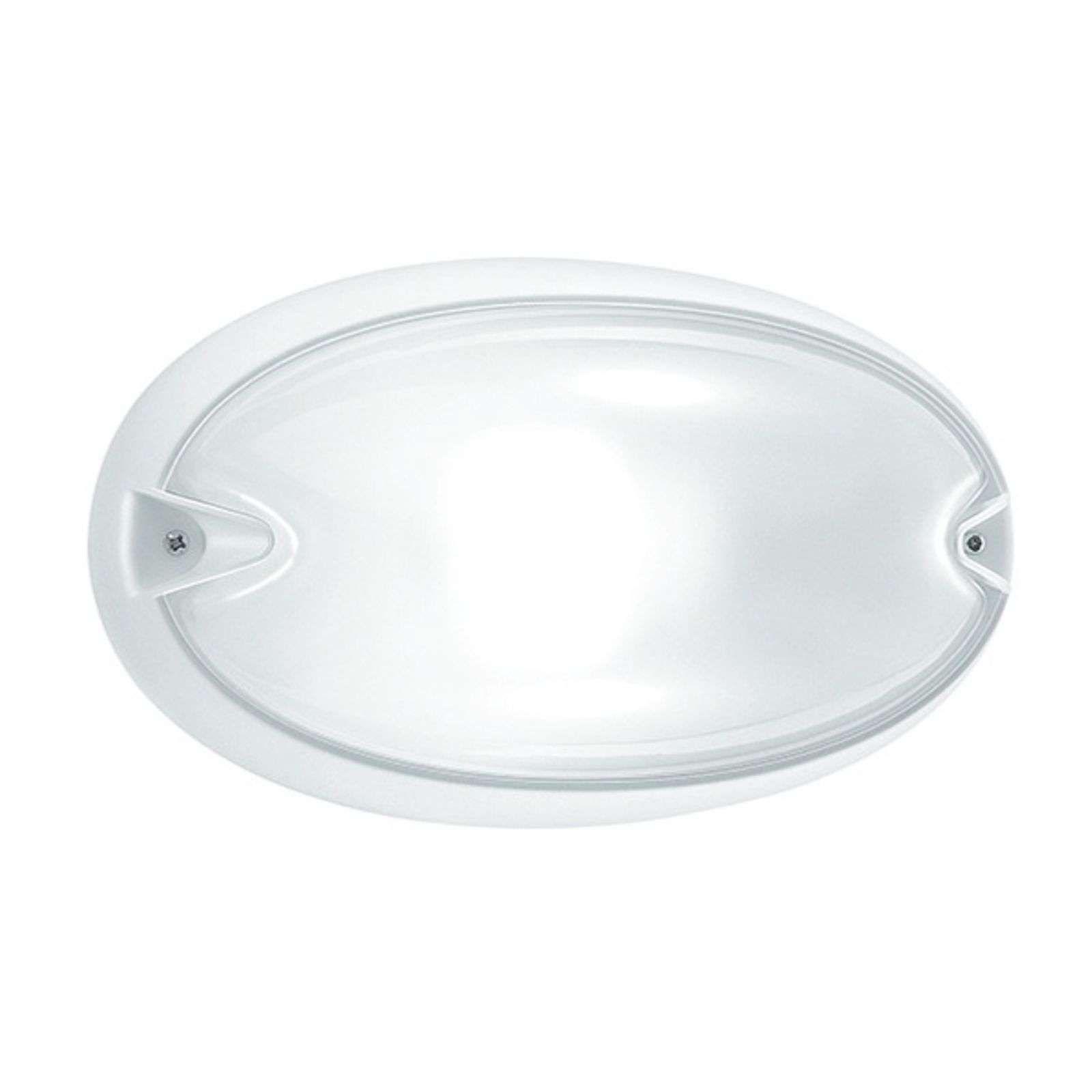 Ovale Aussenwandleuchte Chip Buitenlamp Wandlamp Binnenverlichting