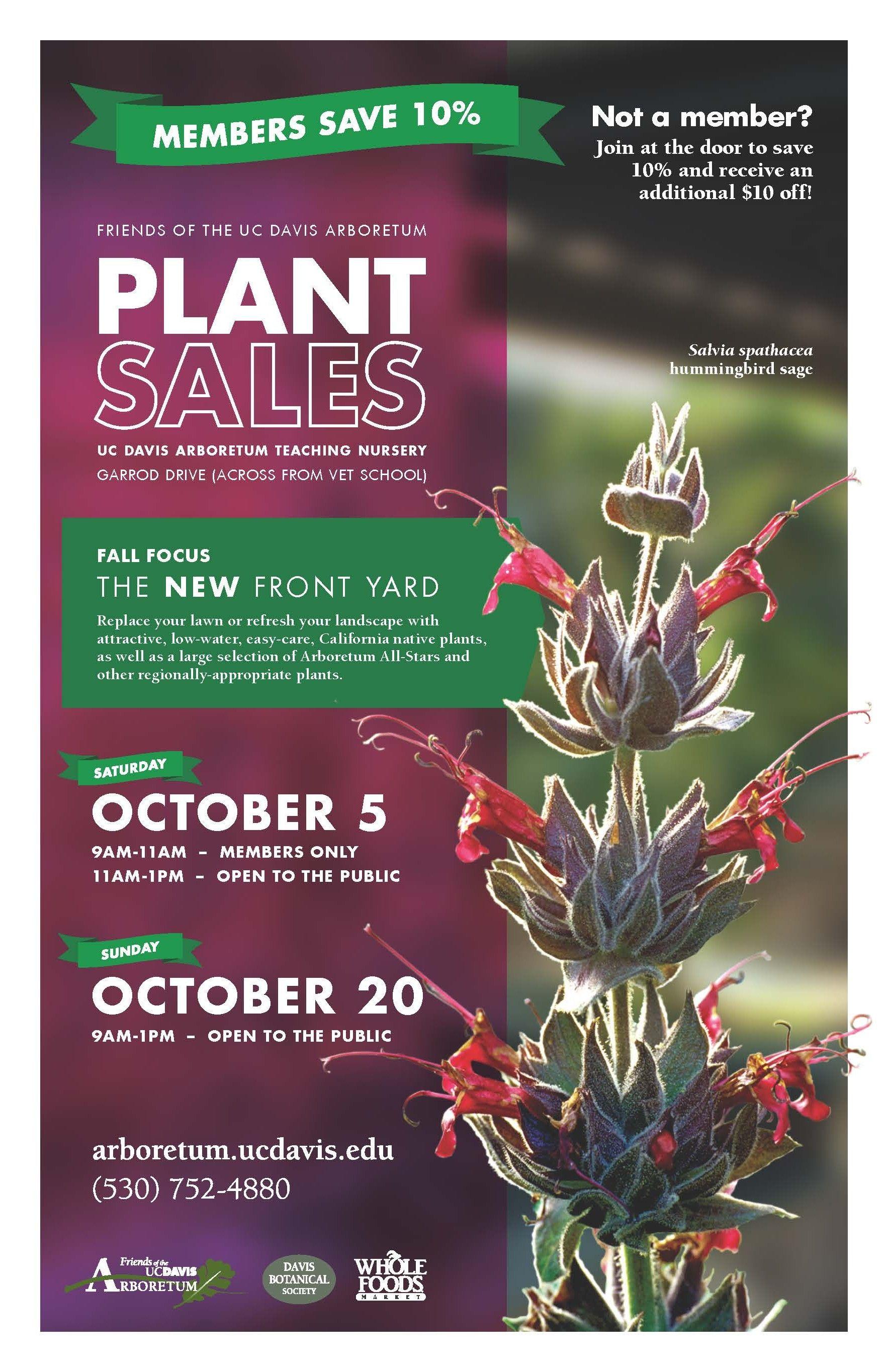 de40022aa7d1648b5e3da3f973194ab5 - Washington County Master Gardeners Plant Sale