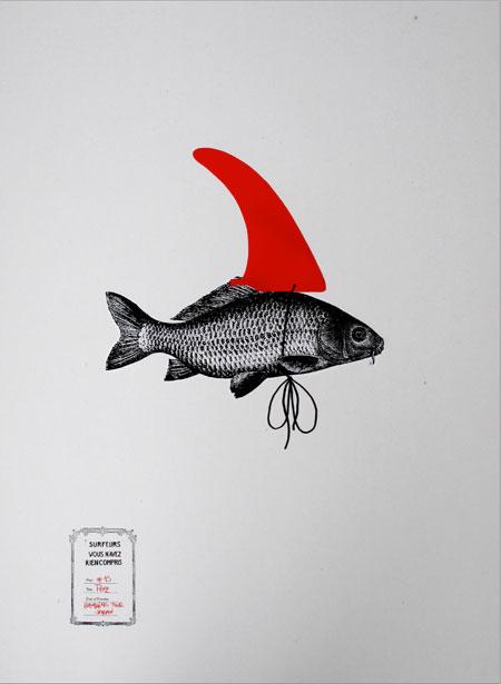 Pez Tiburon Grafico Aleta Illustration Design Graphique Graphisme Art Graphique