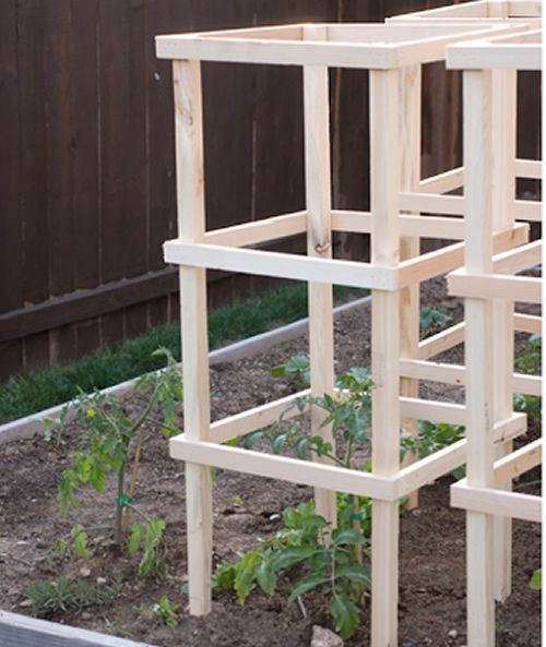 Diy Wooden Tomato Cages Sturdy Inexpensive And Easy To Make