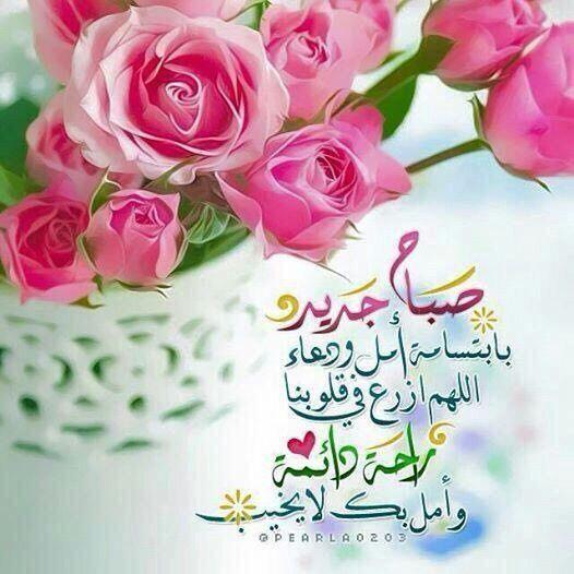 للصبآح لغة في جبين الكون تؤججها نسمآت الصباح المشرقة ومع تلك النسمآت تترآئ لنا صور الأحبة ف Beautiful Morning Messages Good Morning Flowers Good Morning Arabic