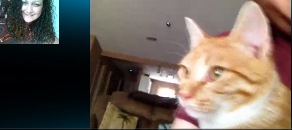 Skype, it isn't just for humans anymore.