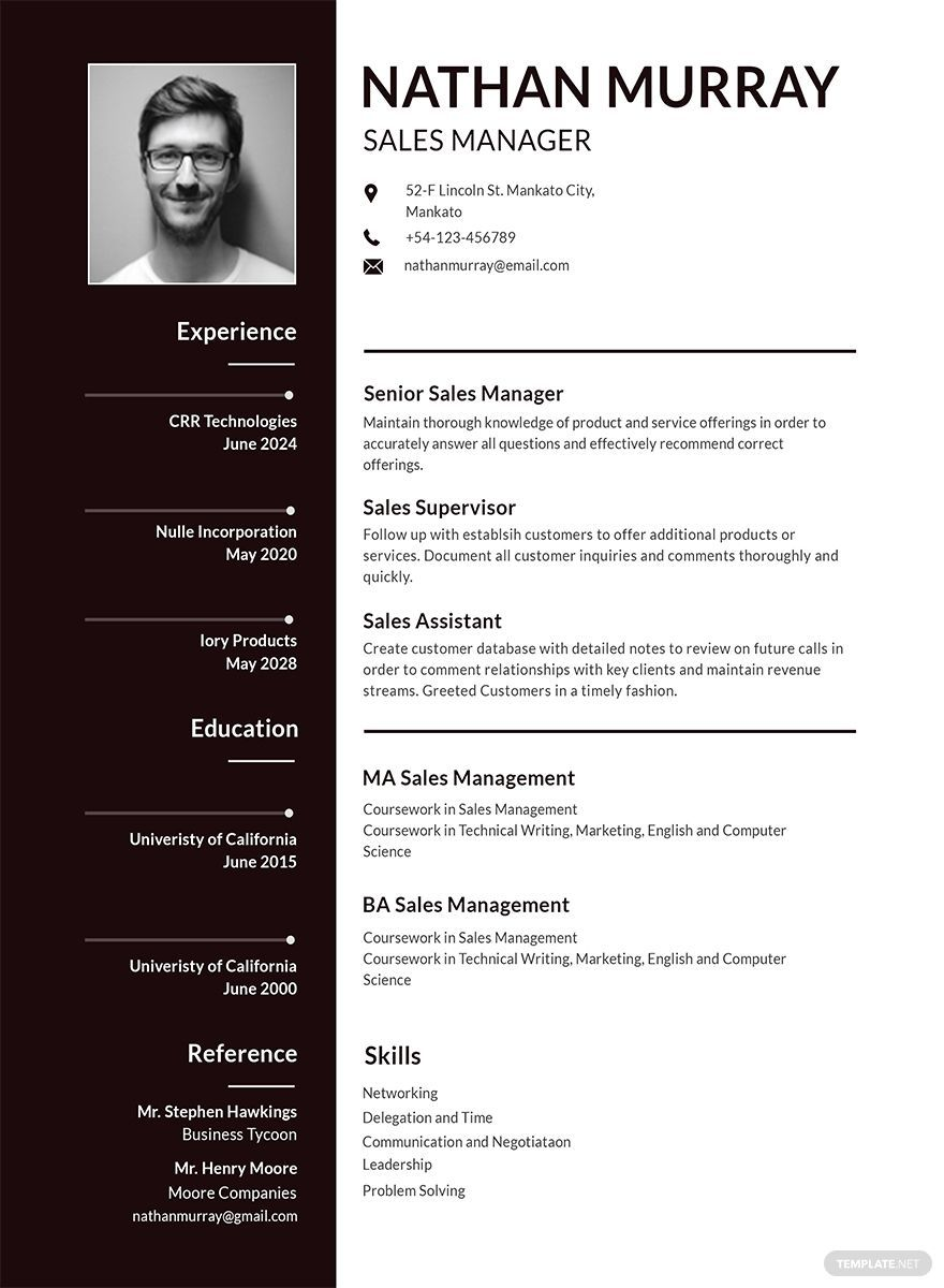 Instantly Download Free Sales Manager Resume Template