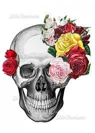 Resultado De Imagem Para Desenhos Caveira Com Rosas Caveira