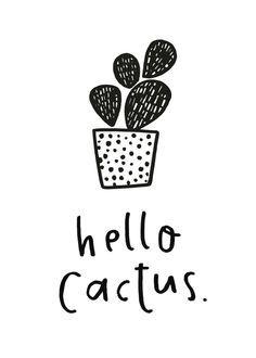 'Hello Cactus' - The Ginger Llama