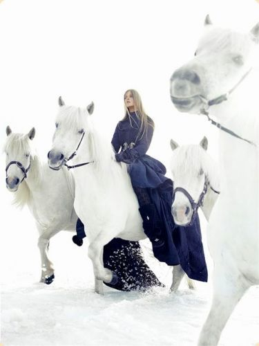 winter white horses and blue coat dress @Corrie Traxler Traxler Traxler Donahue this made me think of you!