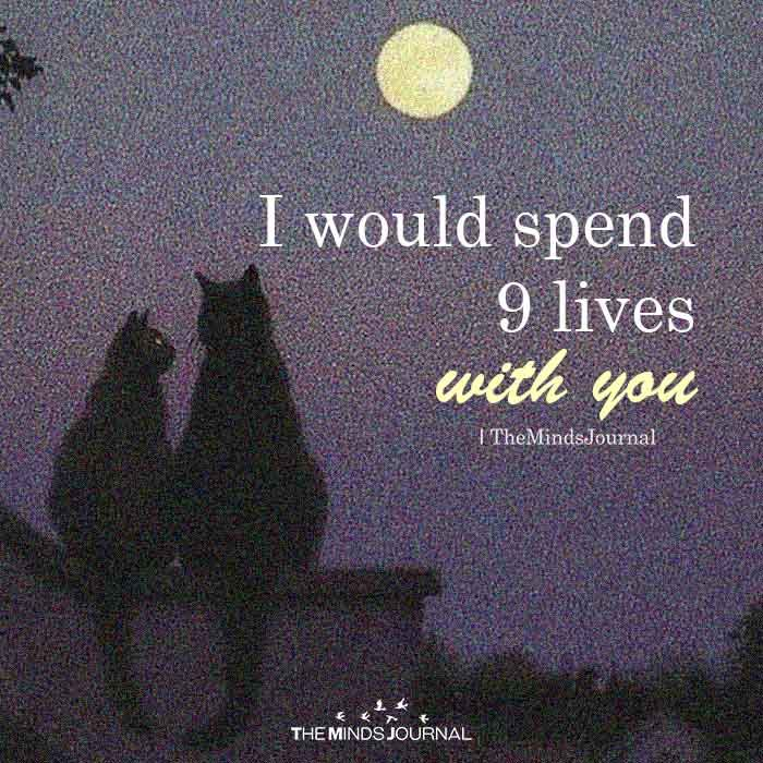 I Would Spend 9 Lives With You