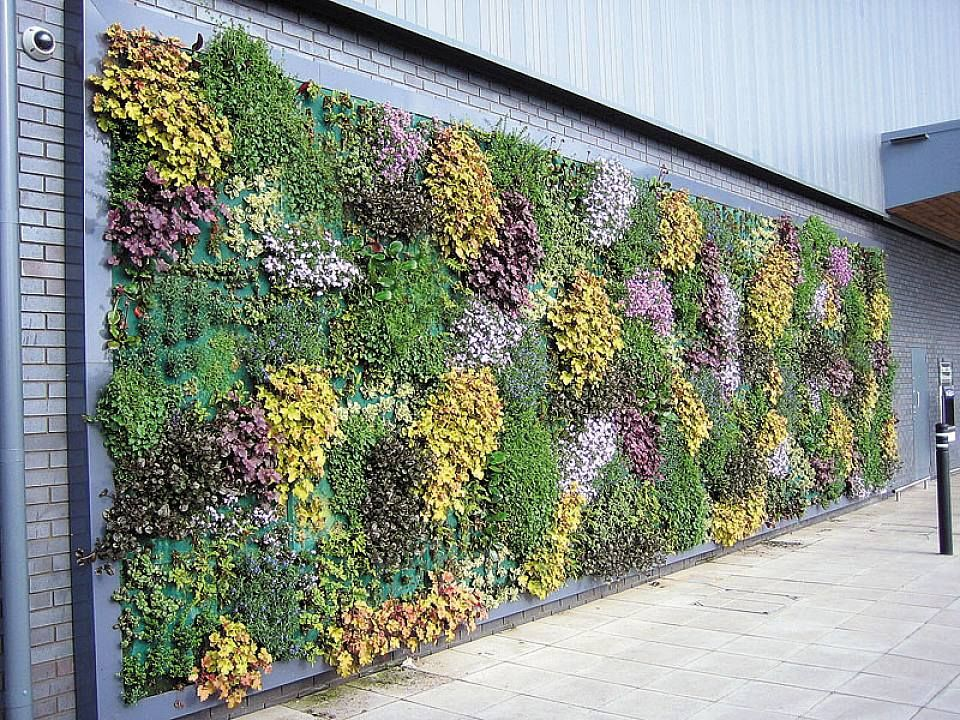 Garden wall decor ideas
