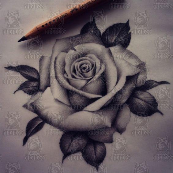Realistic Rose Drawing Tattoo By Madeleine Hoogkamer Darkos