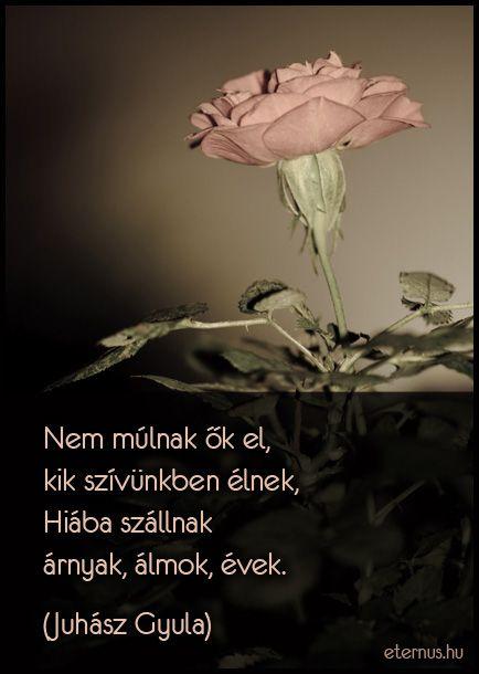 halálról szóló idézetek Juhász Gyula idézet | Memorial poems, Wise quotes, Life