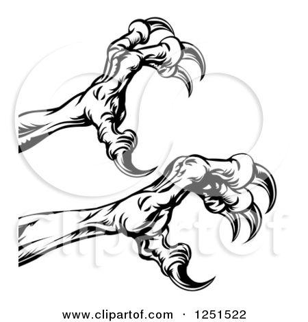 Hawk Talon Drawing | Go Back > Gallery For > Hawk Talon ...
