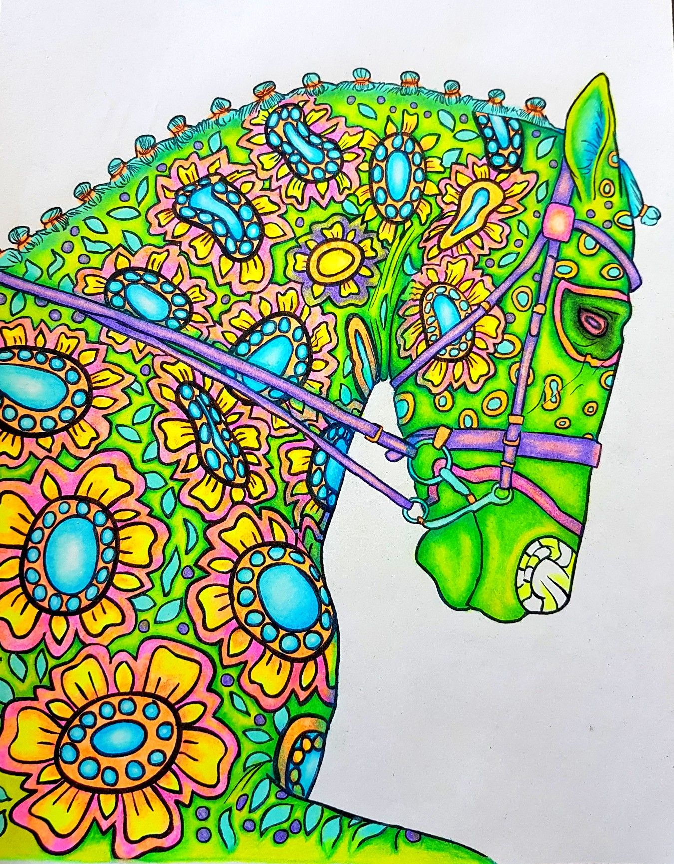 Amazing world of horses | coloring pages completed by me ...