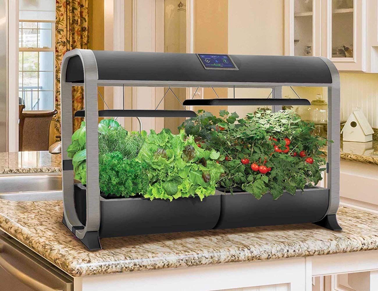 Aerogarden Farm Plus Smart Hydroponic Garden Lets You Grow 400 x 300