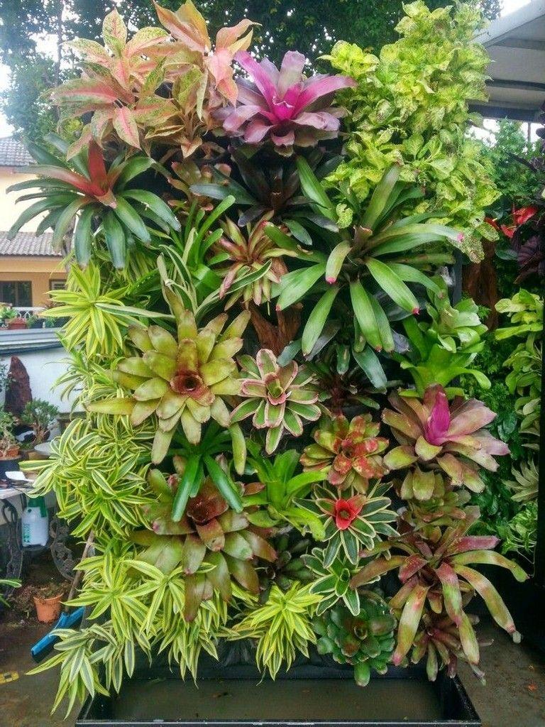 46+ Awesome Vertical Garden Design Ideas -   21 garden design Wall awesome ideas