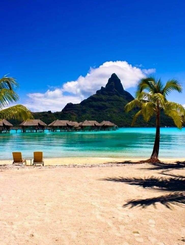 Pin On Travel Polynesia: Pin By Maxim On My Pictures