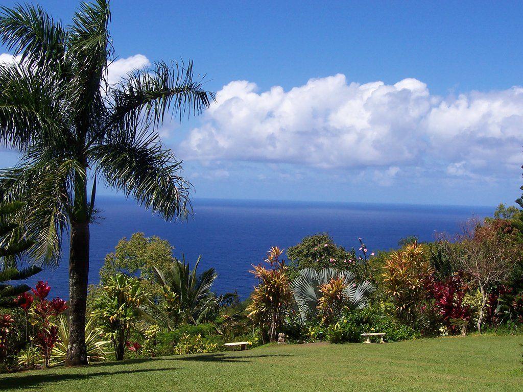 de47861e15b5dc420bbc6edbdd7b452e - Hana Maui Botanical Gardens Hana Hi