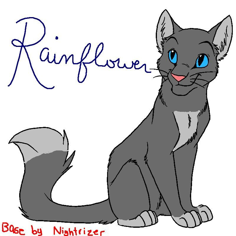 SkyClan39s Camp Map SkyClan T Warrior Cats Cats And