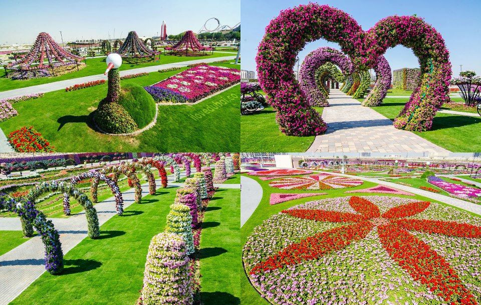 Detail Location Map of Dubai Miracle Garden for Travelers