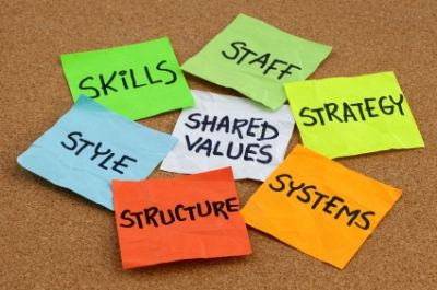17 Best images about Organisational Culture & Learning on ...