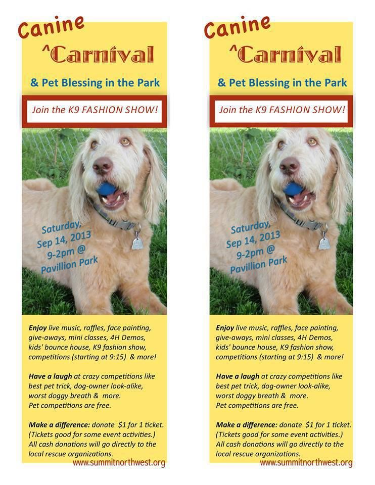 Canine Carnival in Washington state to find forever homes