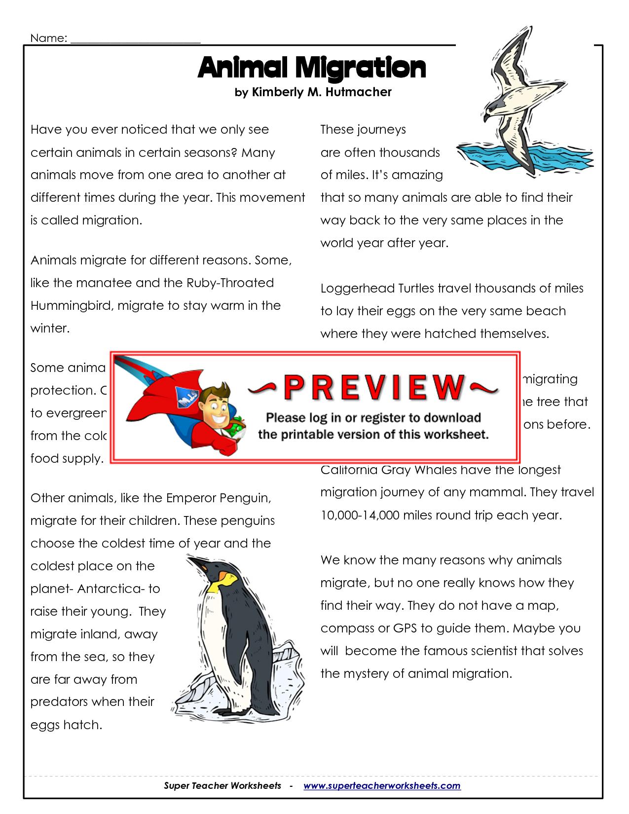 bird migration worksheets google search education science pinterest bird migration and. Black Bedroom Furniture Sets. Home Design Ideas