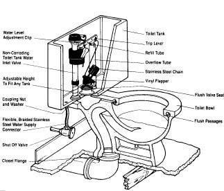 Plumbing Tips For A Toilet Bathroom Toilets Toilet