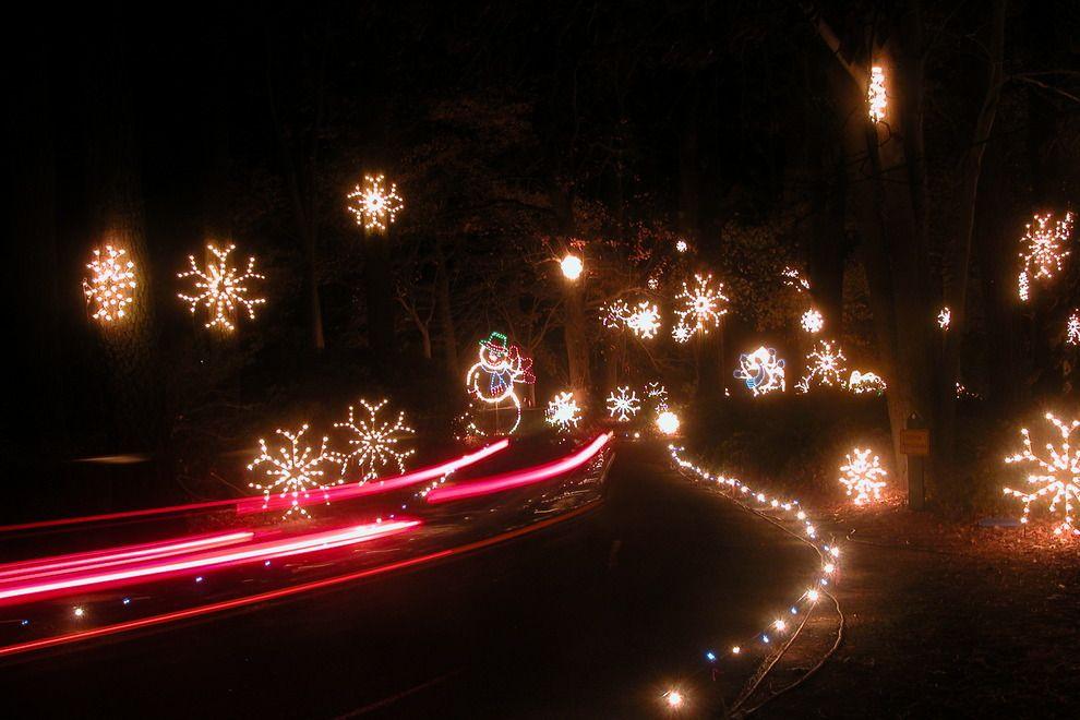 Dominion Garden of Lights-Norfolk Botanical Garden http://www.10best.