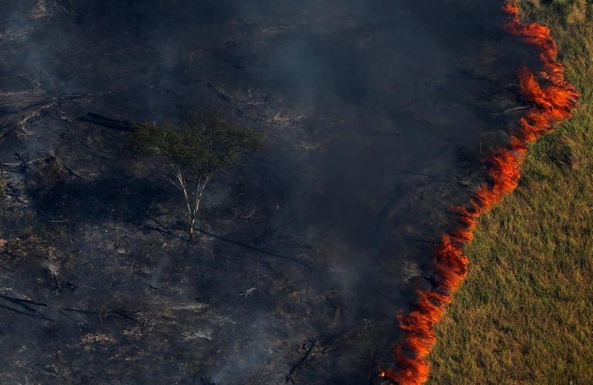 El Amazonas En Llamas Incendios Forestales Superan Los 70 000 En