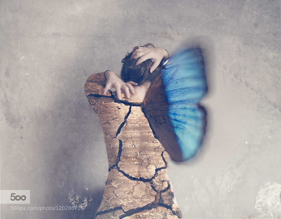 chrysalide - Pinned by Mak Khalaf You can overcome every obstacles to become something better Fine Art albumartartisticbluebutterflycolorconceptconceptualcovercreativedirtfantasyfine artgirllondonmusicparisphotographyportraitselfportraitseoulsurrealwhimsical사진예술초현실셀프 포트레이트컨셉트기발함음악 앨범 by severinearaynaud