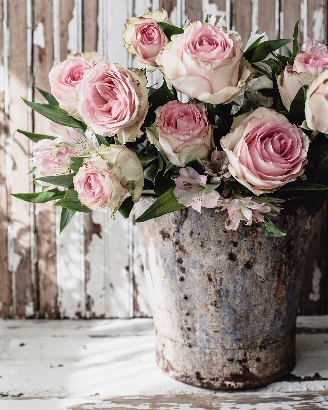 Home Remodel Windows In 2020 Beautiful Flowers Beautiful Pink