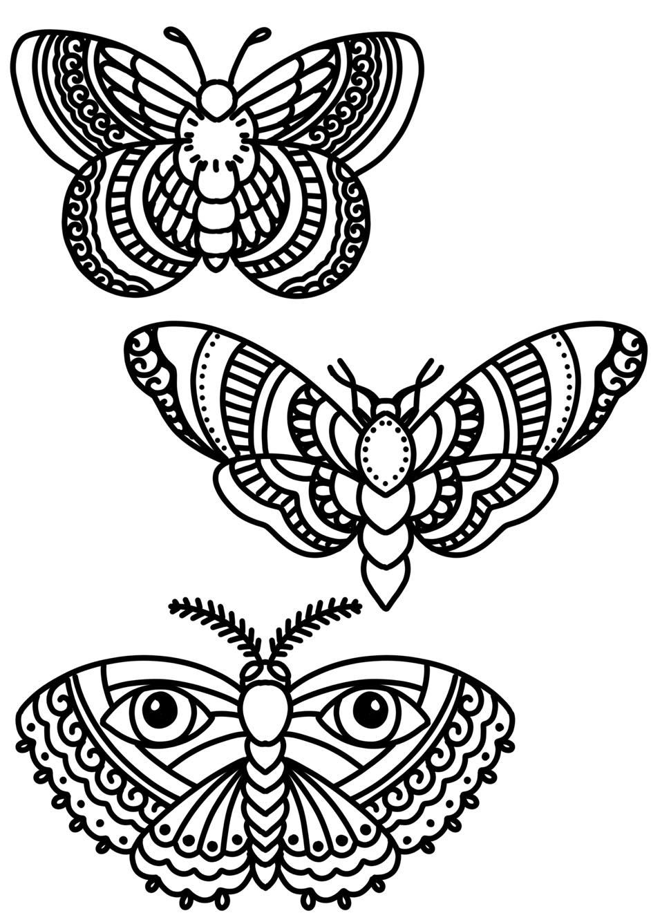 Blackwork Butterfly Bold Lines Tattoo Design Follow Me On My Blog To Join All My Tips And Tricks Ab Line Tattoos Traditional Butterfly Tattoo Tattoo Portfolio