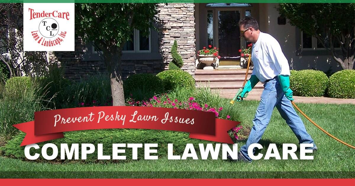 Tendercare Lawn Landscape Offers A Complete Lawn Care Program To