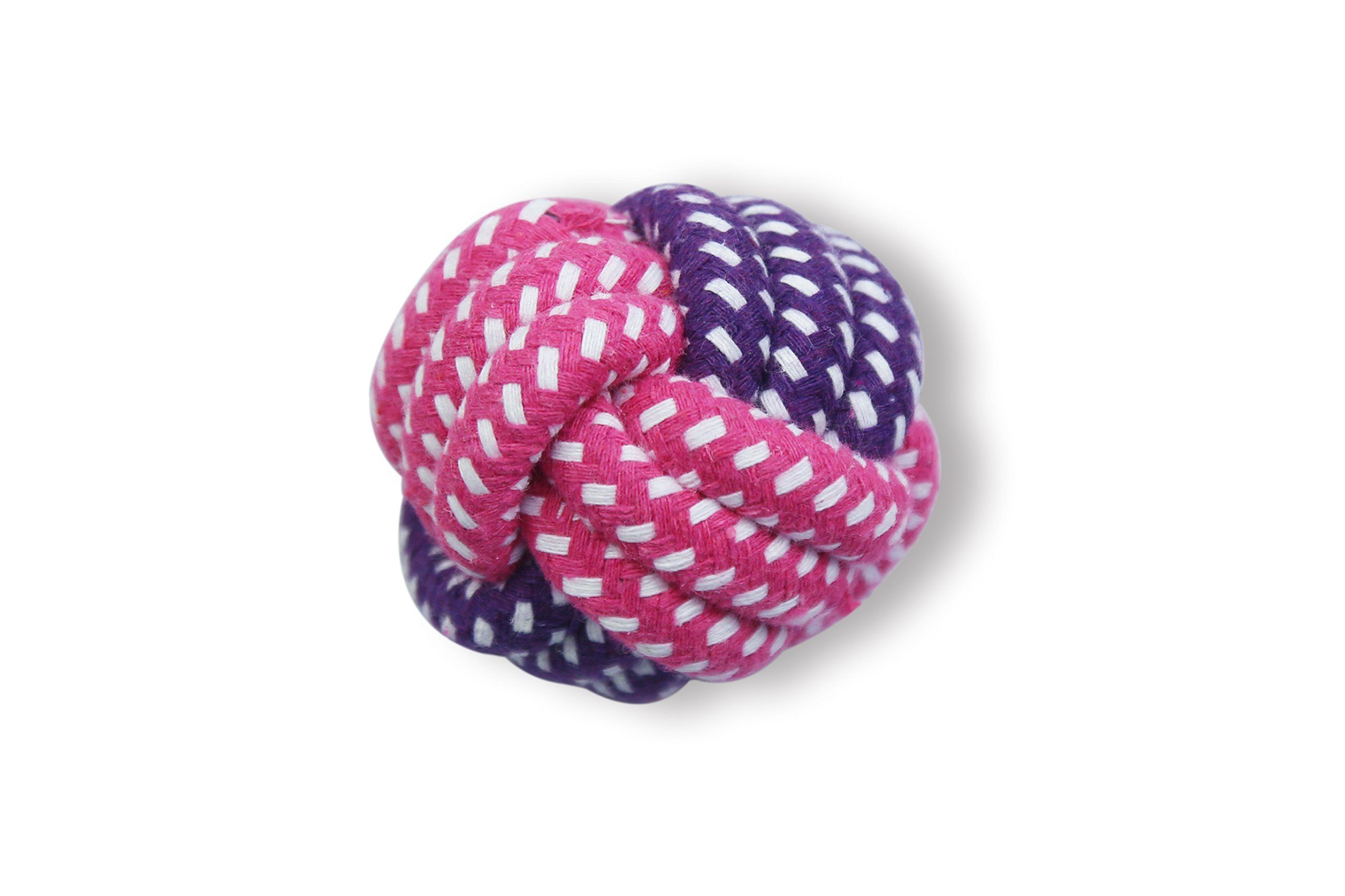 Team Howard 10 Pack Dog Toys A Dog Rope Toys A Best Chew Toys For Teething Puppy A Teething Toy For Small Medium And Large Dogs A S Dog Toys Dog T