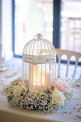 Photo of Shabby Schnieke Wedding Decor Birdcage Centers in the Mob House