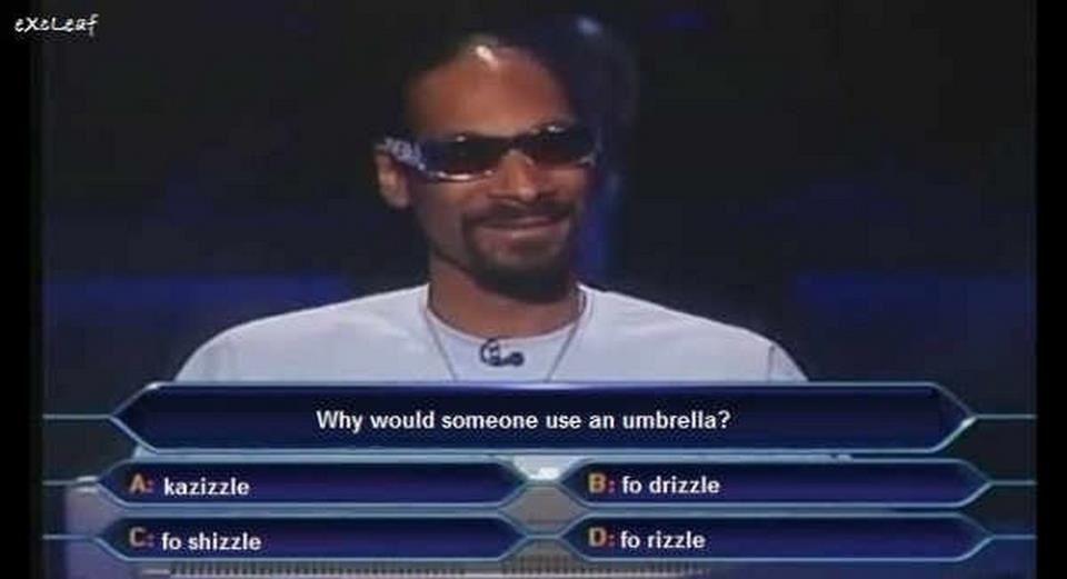 Snoop dogg dog meme - photo#2