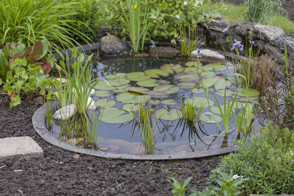 15 breathtaking backyard pond ideas for my secret garden pinterest teich garten und. Black Bedroom Furniture Sets. Home Design Ideas