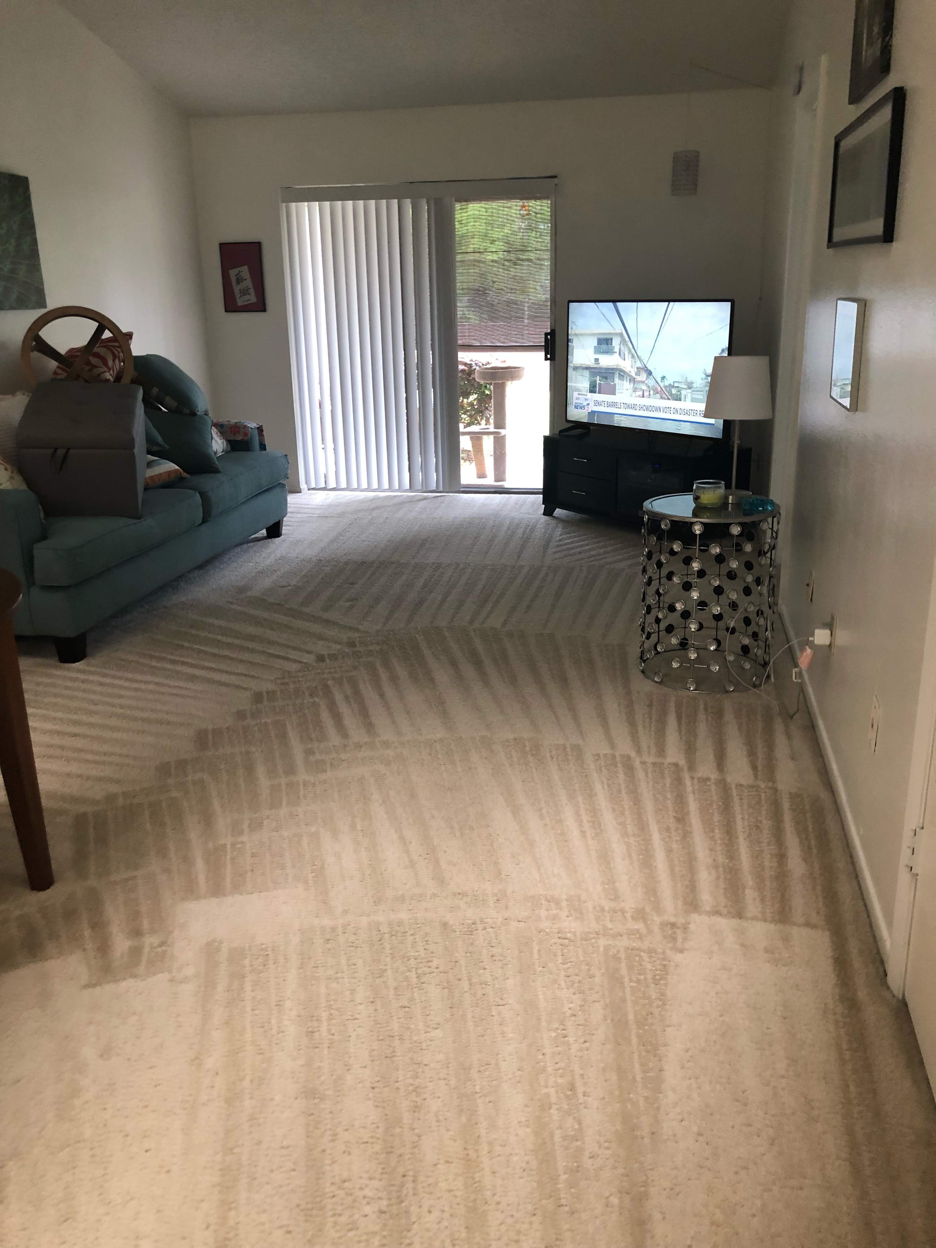 We Provide A Variety Of Services In A Variety Of Areas If You Re Looking For Carpet Cleaning Windermere Services W How To Clean Carpet Windermere New Carpet
