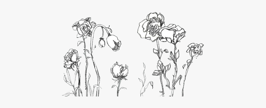 Aesthetic Flower Drawing Png Flower Drawing Tumblr Flower Drawing Images Easy Flower Drawings