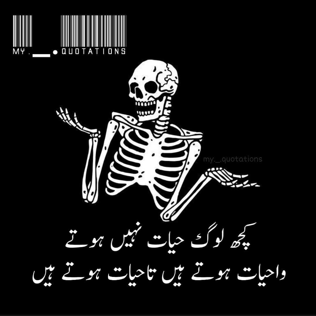 Pin By Bakhtawer Bokhari On Memes Are Love Funny Quotes In Urdu Funny Positive Quotes Urdu Funny Poetry