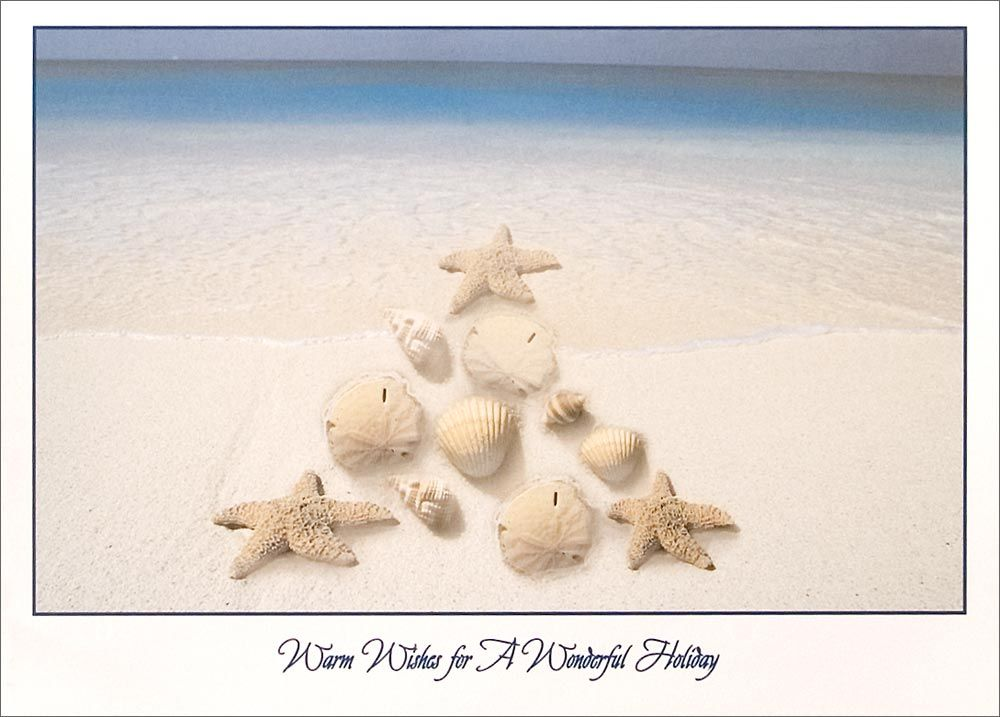 Beach Christmas Cards >> Seashell Sayings And Quotes Home Christmas Cards Themes