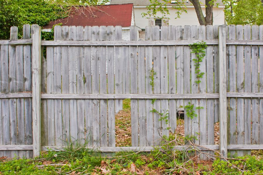 Just Screw Diy Rails To Standing Missing Sections Of Fence To Repair How Old Wood Fence Wood Fence Old Fences Wooden Fence