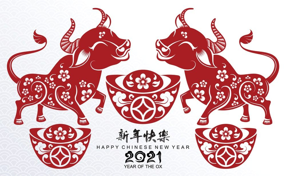 Year of The OX 2021 Images and Wallpaper in 2020 Year of