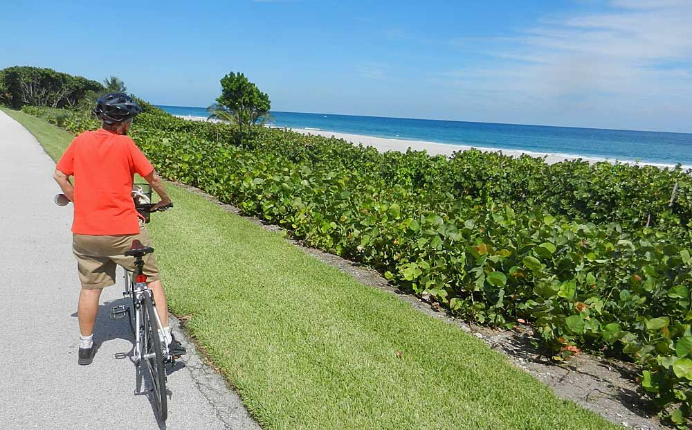 Best Florida Bike Trails Our Favorites In South Florida Beyond