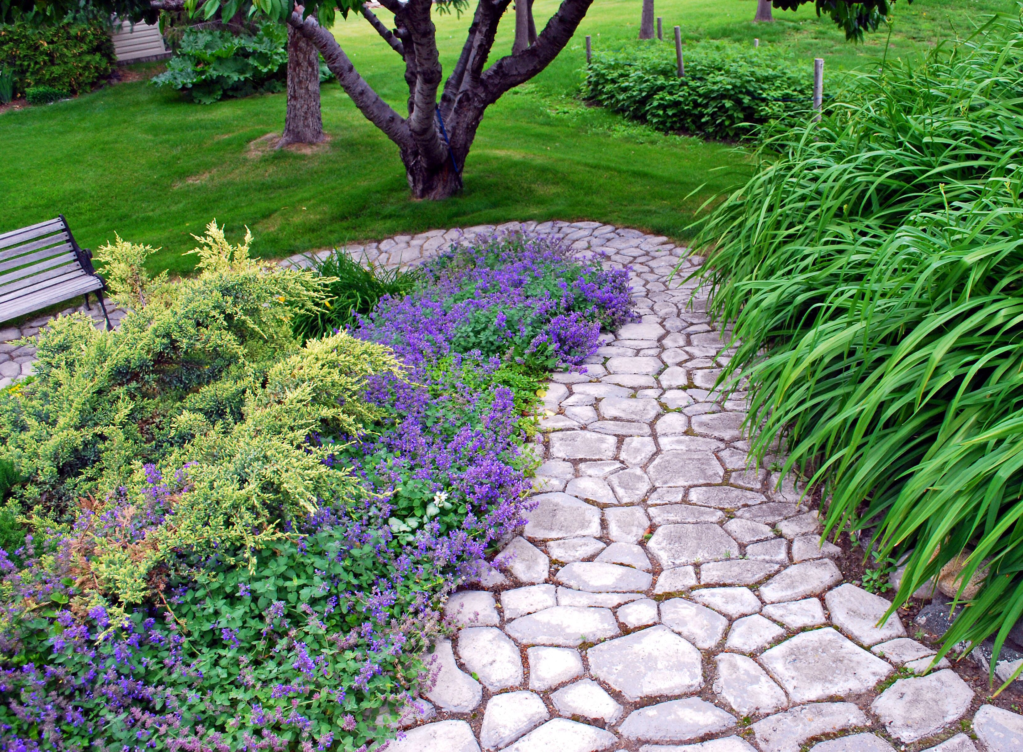 this diy cobblestone paving is made using just one