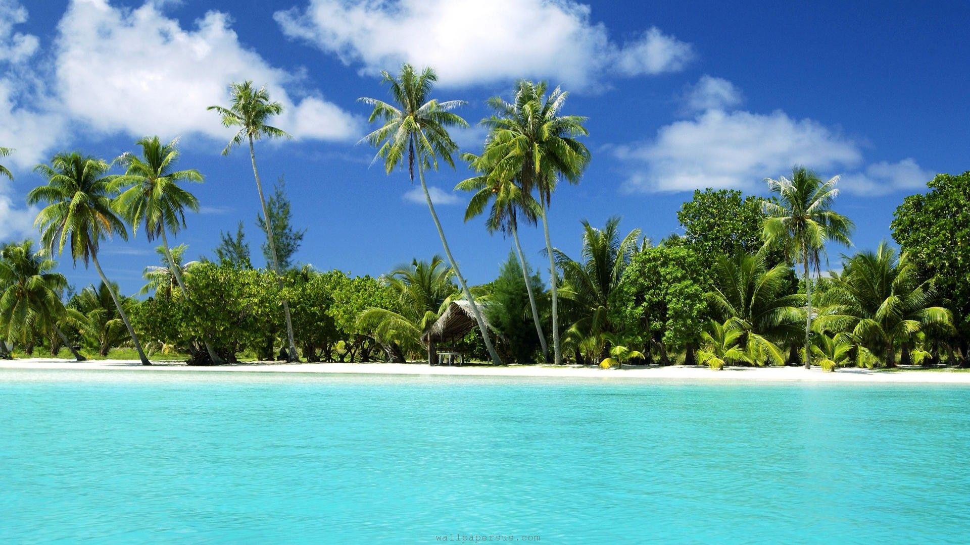 Cool Tropical Landscape Beach Scenery Beach Wallpaper Tropical Island Beach
