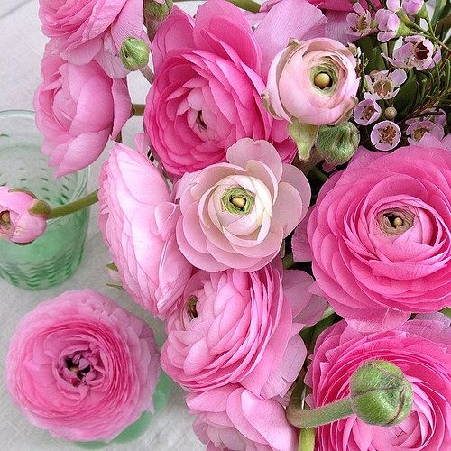 'A Simple Flower Arrangement' - with pink Ranunculus. Styling and photography © Ingrid Henningsson/Of Spring and Summer.