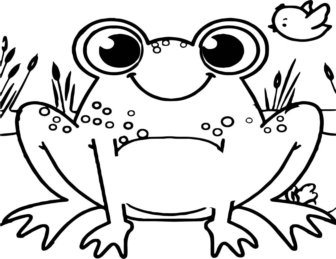 Coloring Pages Of Frogs Red Eyed Tree Frog Coloring Page With Frogs Pages Free 11 Frog Coloring Pages Owl Coloring Pages Animal Coloring Pages