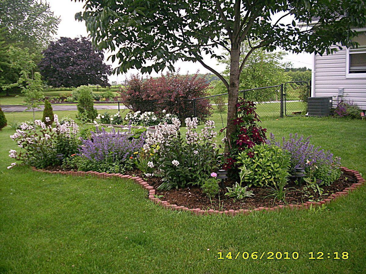 Flower Garden Ideas Wisconsin secret flower garden in yard   wisconsin flower garden - fine