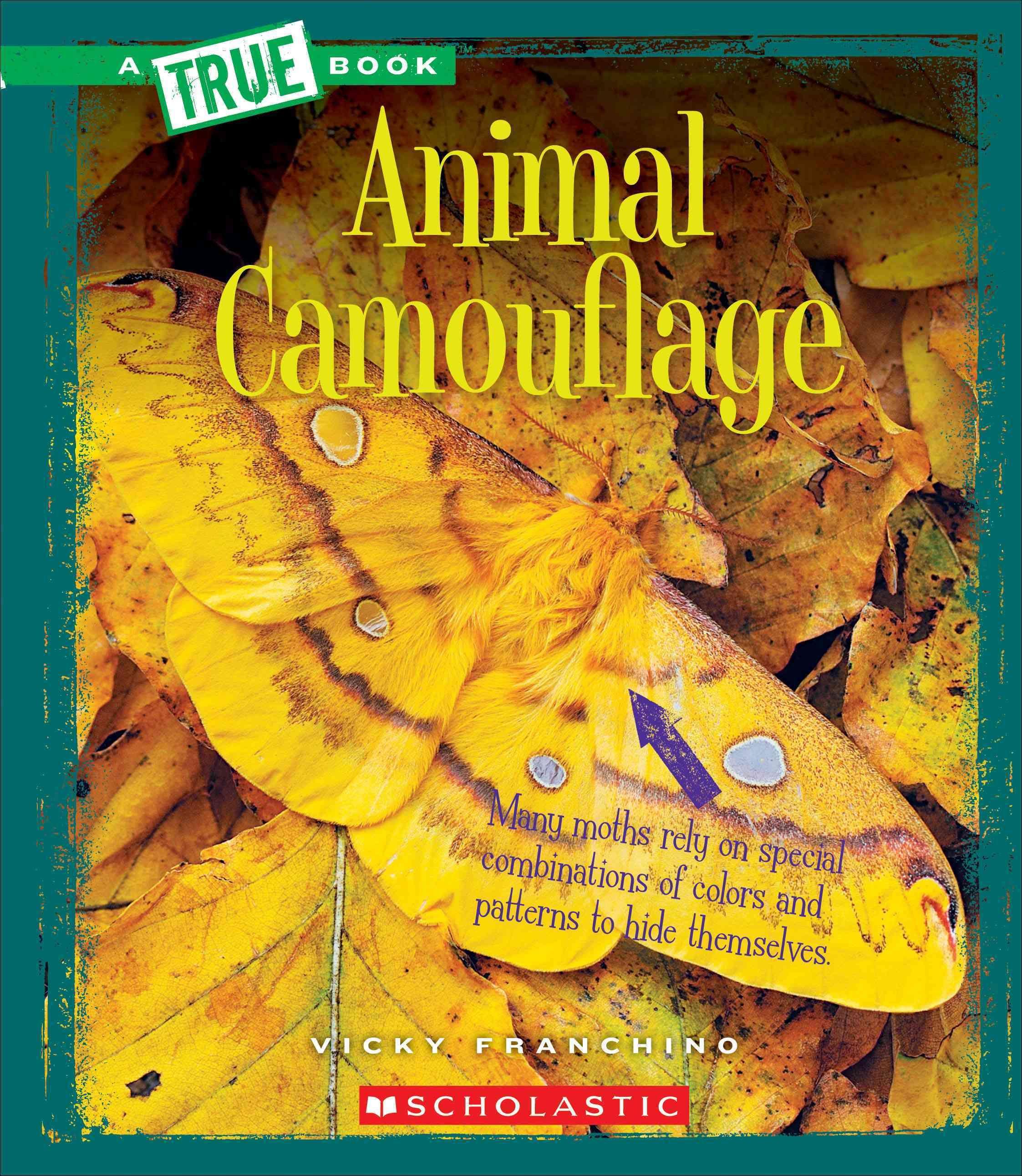 Animal Camouflage