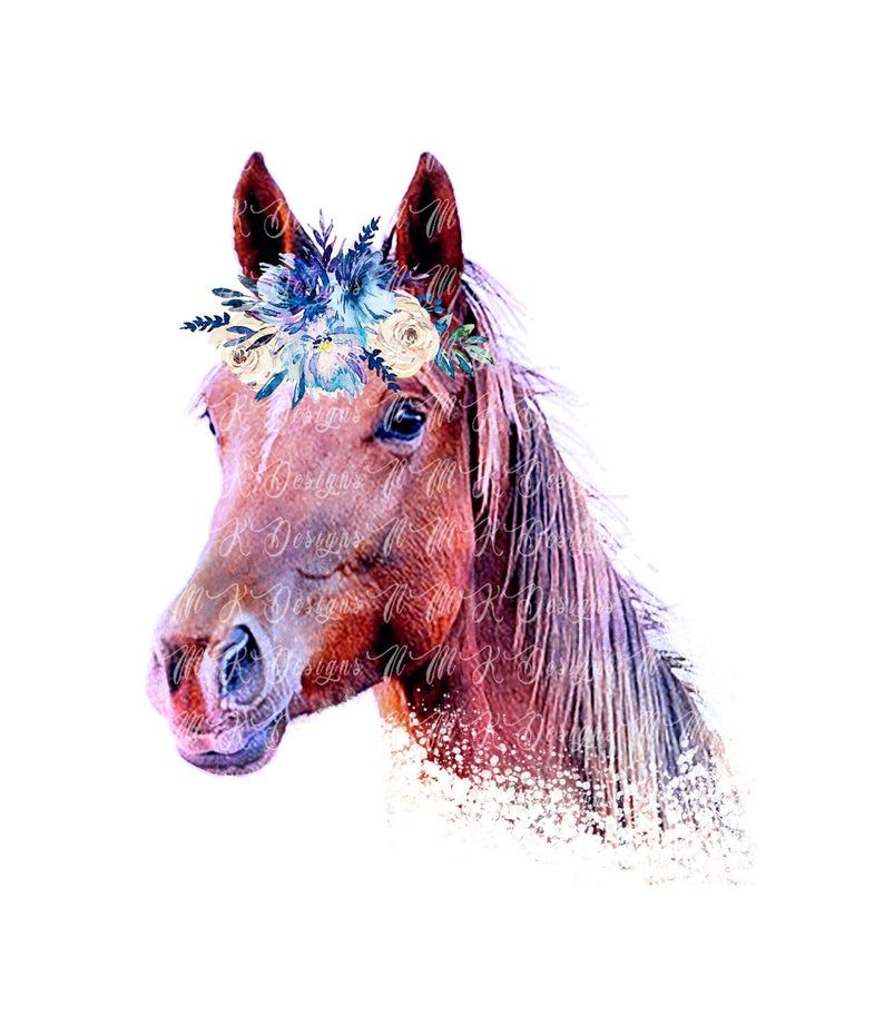 Horse Head With Flowers And Sublimation Designs Png Format Etsy Horse Head Horses Sublime